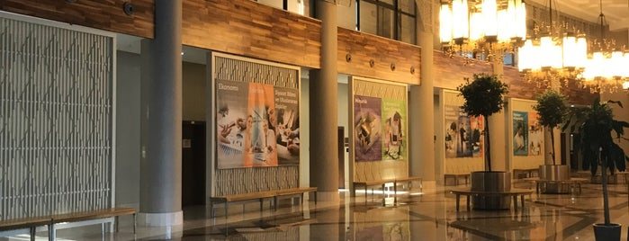 Antalya Bilim University Library is one of Lugares favoritos de Murat.