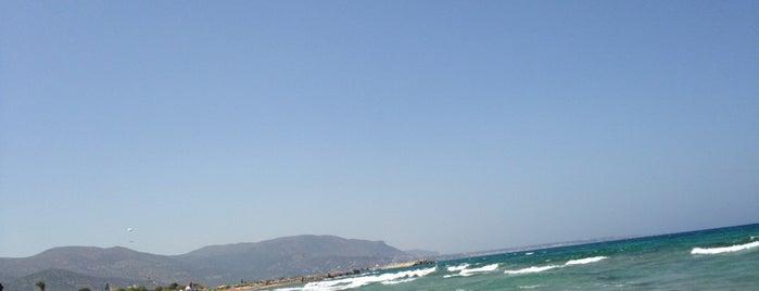 Malia Beach is one of Gespeicherte Orte von Uğur.