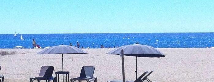 Lasal Arenys de Mar is one of Terrazeo en la costa catalana.