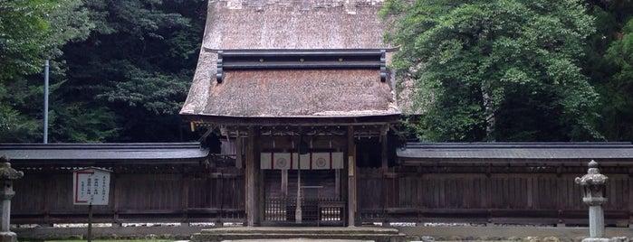 若狭彦神社(若狭彦神社上社) is one of 近江 琵琶湖 若狭.