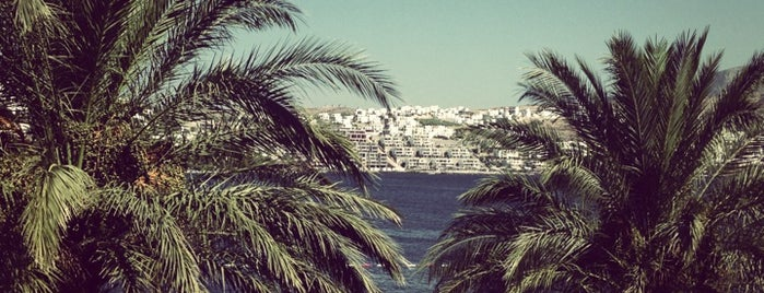 Casa Costa Boutique Hotel is one of Bodrum.