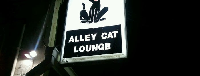 Alley Cat Lounge is one of Indy.