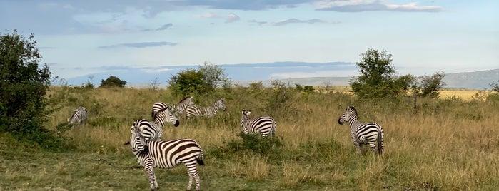 Maasai Mara National Reserve is one of KENYA.