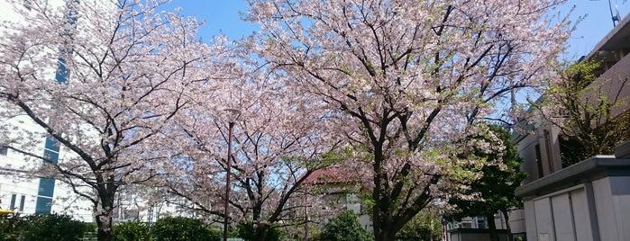 羽田西町児童公園 is one of 神輿で訪れた場所-1.