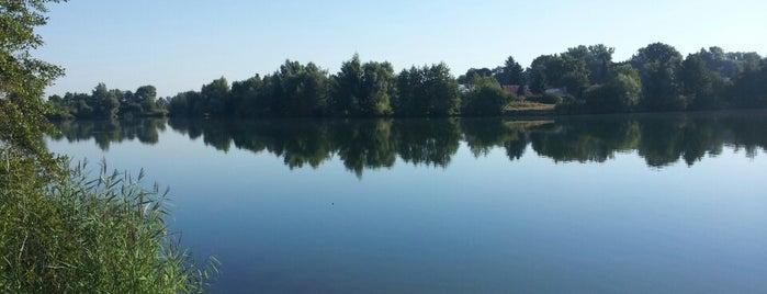 Jezero Sadská is one of Travel - CR.