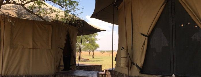 Singita Sabora Tented Camp is one of Lugares favoritos de Ewa.