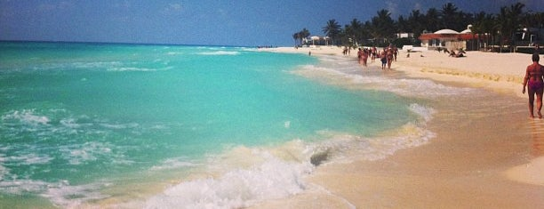 Playacar Beach is one of Locais curtidos por Stephraaa.