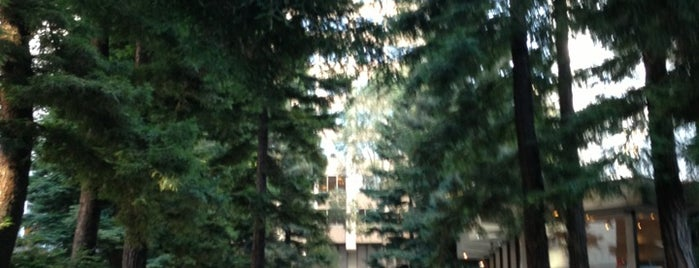 Transamerica Redwood Park is one of Tempat yang Disimpan Alex.