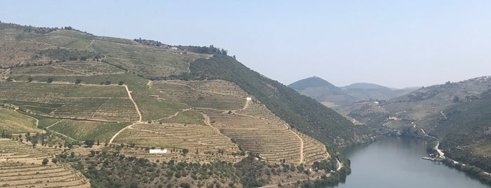 Quinta do Pôpa is one of Wine World.