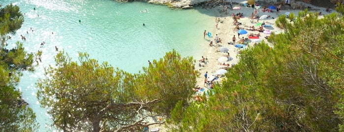 Cala Pi is one of Vamos Mallorca.