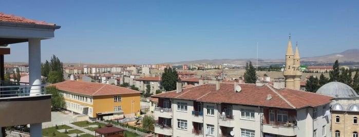 Mustafa&Nurgün Şahiner Malikanesi is one of Orte, die Yunus gefallen.