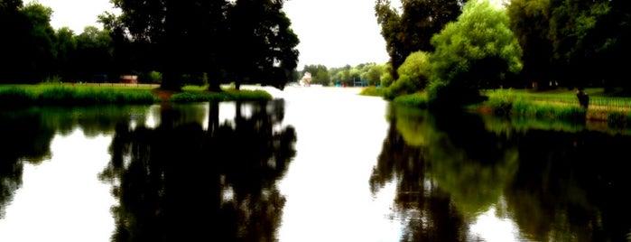 Колонистский пруд is one of Posti che sono piaciuti a Mihail.