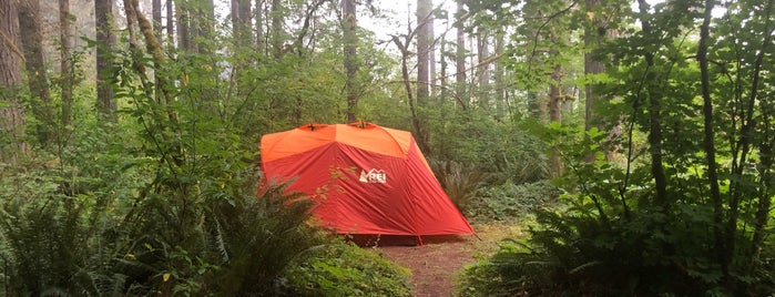 Gifford Pinchot National Forest Big Creek Campground is one of Katherineさんのお気に入りスポット.