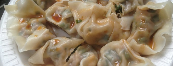 The 15 Best Places for Dumplings in Lower East Side, New York