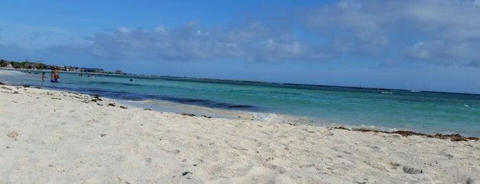 Baby Beach is one of Posti che sono piaciuti a Scott.