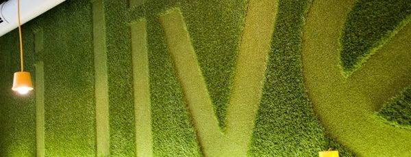 10 мест для вегетарианцев в Киеве