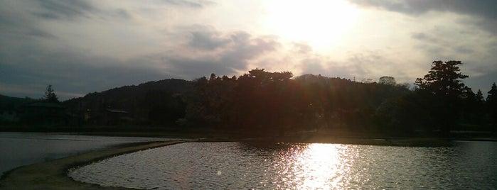 無量光院跡 is one of 日本にある世界遺産.