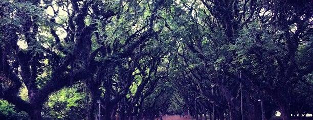Parque Marinha do Brasil is one of Porto Alegre.