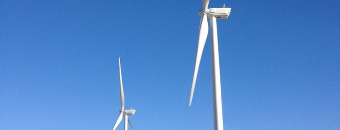 Vestas American Wind Technology is one of California.