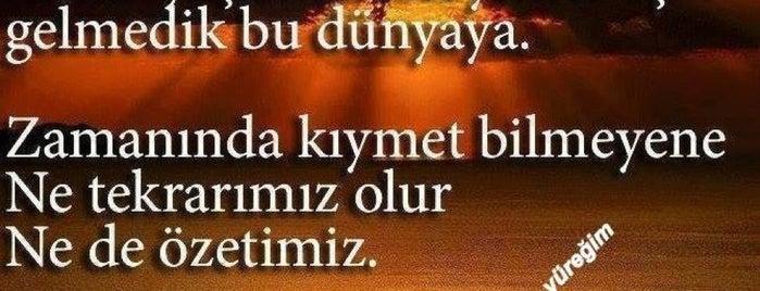 ❤Erdal Kaya❤ is one of Guzel Sozler.