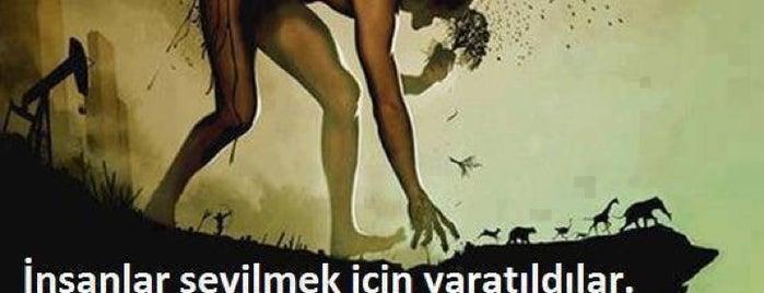 ❤Erdal Kaya❤ is one of istanbul kazan ben kepçe ;).
