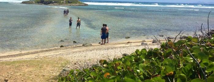 Coralita Beach is one of Locais curtidos por Jeff.