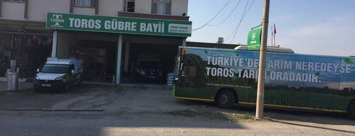 Toros Tarım A.Ş Gübre Bayi Mehmet Yeşildağ is one of สถานที่ที่ Celâl ถูกใจ.