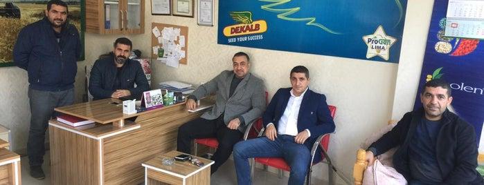 Güneşler Tarım & İlaç Ltd Şti. Toros Tarım Gübre Bayi is one of Orte, die Celâl gefallen.