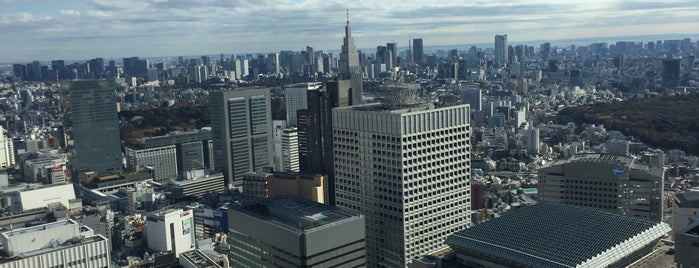 東京都庁展望室 is one of Japon.