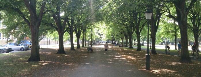 Rörsjöparken is one of Malmö & Kopenhagen und Schleswig.