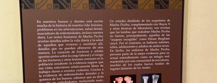 Museo MachuPicchu Casa Concha is one of Cuzco Favorites.