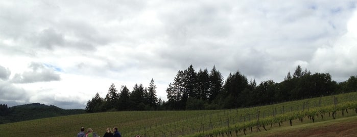 Elk Cove Vineyards is one of Oregon.