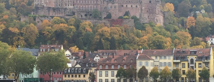Heidelberger Schloss is one of Heidelberg!.