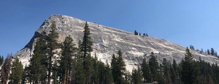 Lembert Dome is one of Yosemite.