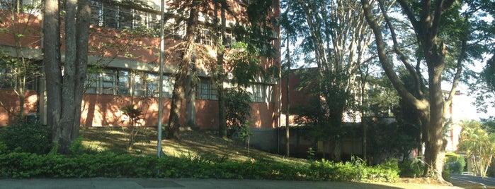 Faculdade de Medicina de Santo Amaro is one of Locais curtidos por Alexandre.