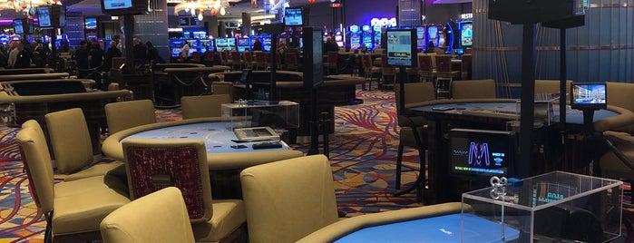 Hard Rock Hotel & Casino Atlantic City is one of Fun.
