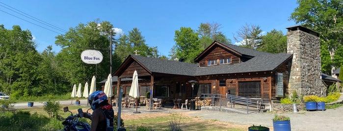 Blue Fox Motel & Restaurant is one of Around Narrowsburg.