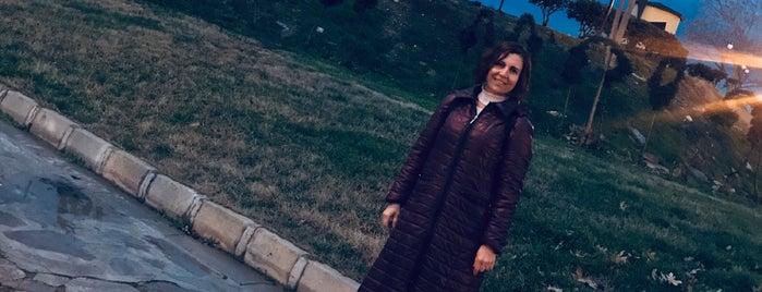 Gölet Doğal Yaşam Alanı is one of 🇹🇷İbrahim'in Beğendiği Mekanlar.