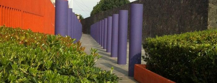 Escuela Nacional de Arte Teatral is one of CDMX.