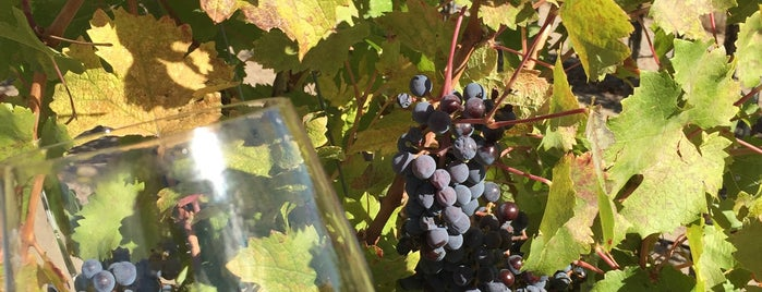 Kitzke Cellars is one of Wine Trip: Washington (2nd US wine country).