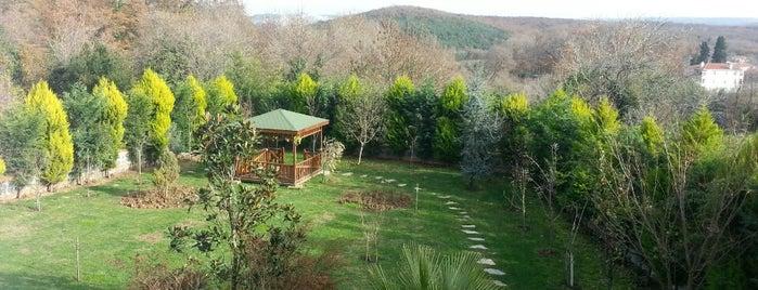 Şile Kızılca Köyü is one of Posti che sono piaciuti a tt..