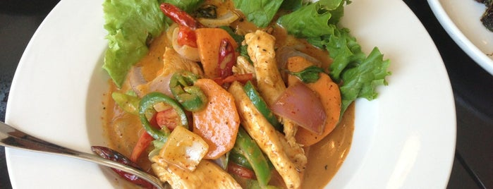 Andy's Thai Kitchen is one of Chicago restaurants 1.