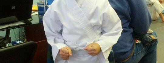 Omni Martial Arts is one of Lugares favoritos de Patrick.