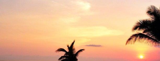 Playa Viva Hotel is one of International: Hotels.