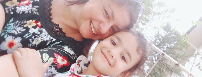 Soma Çocuk Gelişim ve Gençlik Eğitim Merkezi is one of สถานที่ที่ Gözde ถูกใจ.
