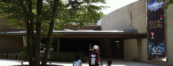 Gunma Museum Of Natural History is one of Orte, die Masahiro gefallen.