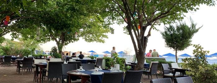Çıralı Arikanda Restaurant 2 is one of South Shore Of Turkey.