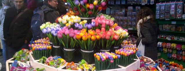 Bloemenmarkt is one of Amsterdam to-do.