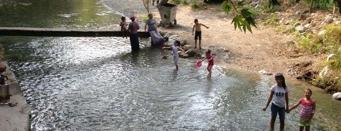 Su Çıktı Piknik Alanı is one of สถานที่ที่บันทึกไว้ของ Emre.