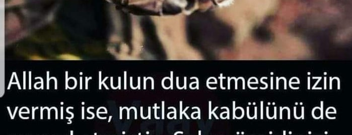 Anadolu is one of สถานที่ที่ Can ถูกใจ.